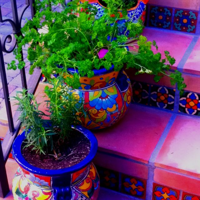 Festively Mexian tile herb pots                                                                                                                                                     More