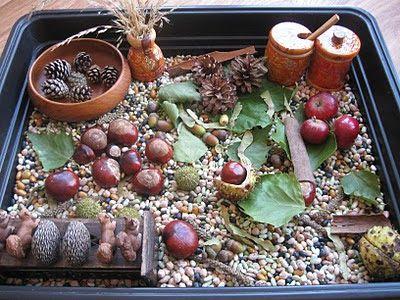 Autumn sensory tray                                                                                                                                                      More
