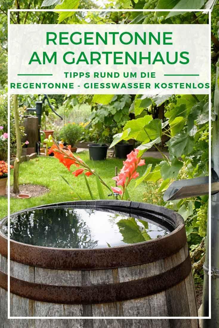 Die Regentonne Am Gartenhaus Besseres Giesswasser Kostenlos Garten Bewasserung Garten Regentonne