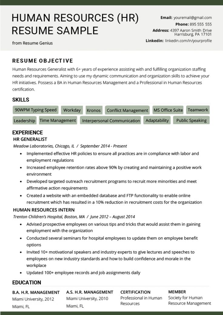 business development resume summary