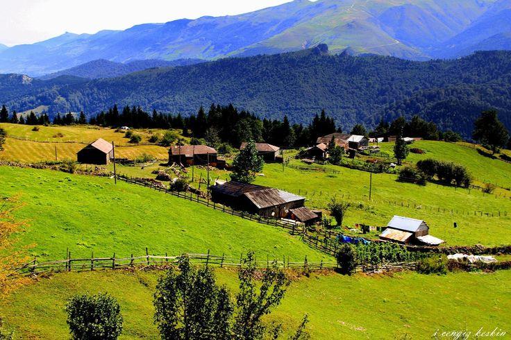 Trabzon'da yayla zamanı... Fotoğraf: İsmail Cengiz Keskin