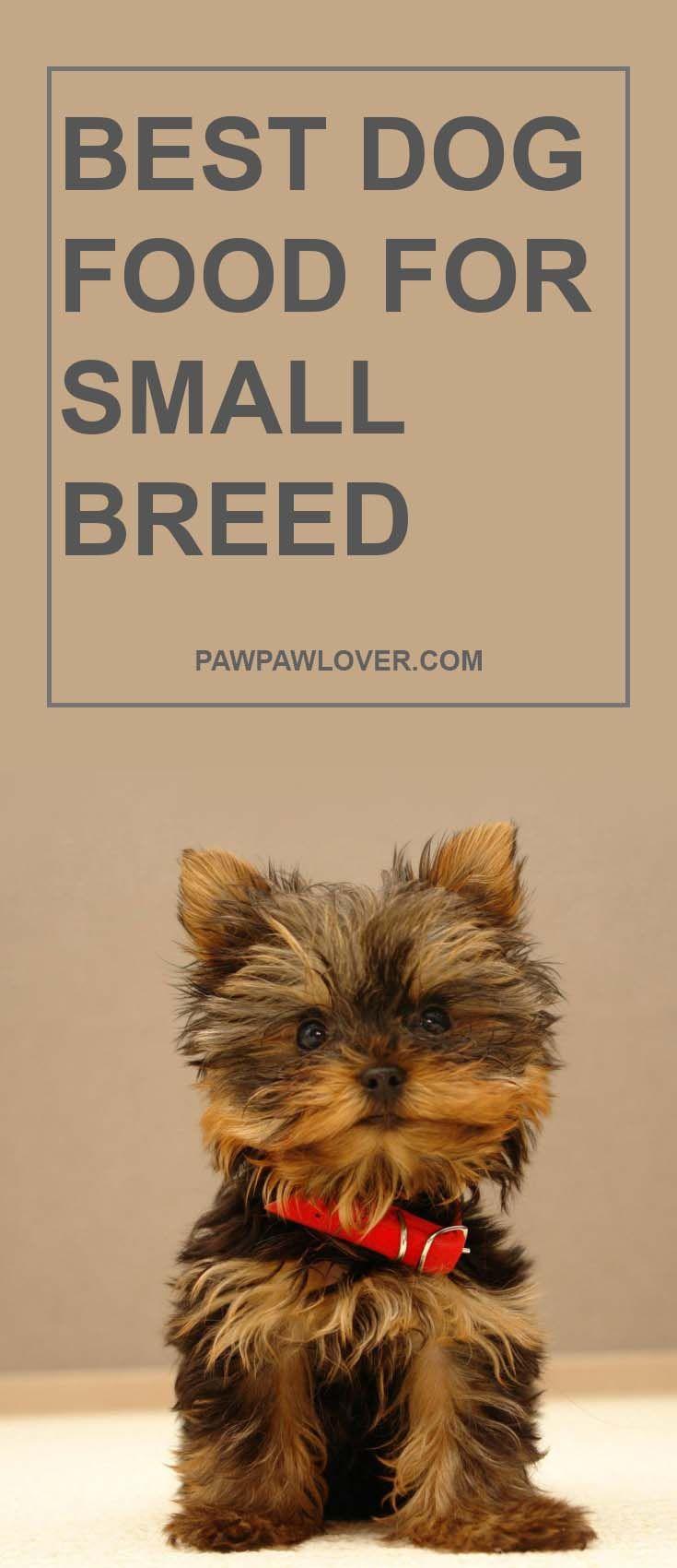 small dog food pedigree