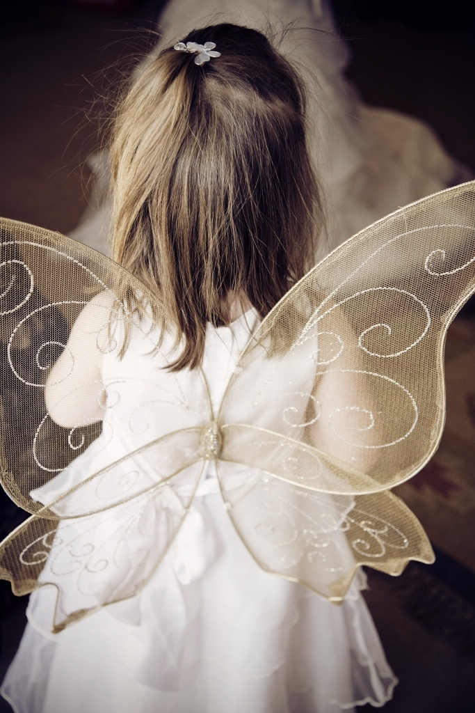 Flower girl fairy wings