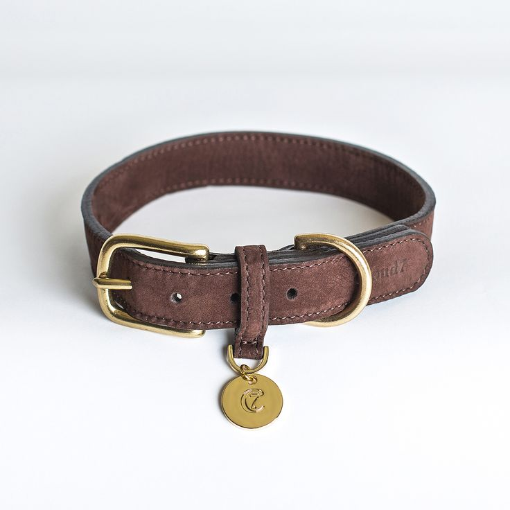 Cloud 7 Dog Collar TIERGARTEN Mocca