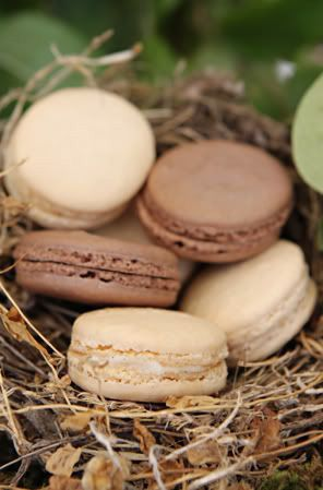 REVEL: Chocolate Macarons