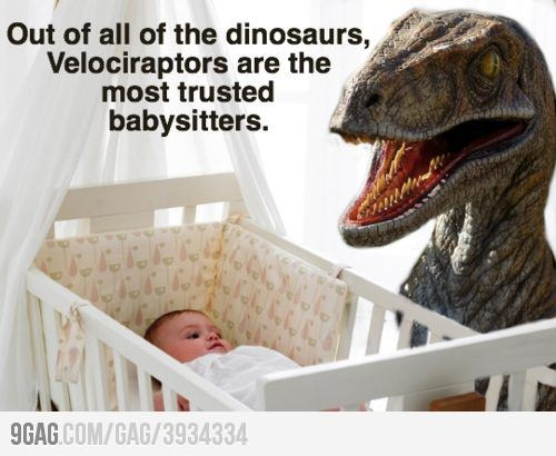 25 best Velociraptor images on Pinterest | Dinosaurs, Ha ha and ...