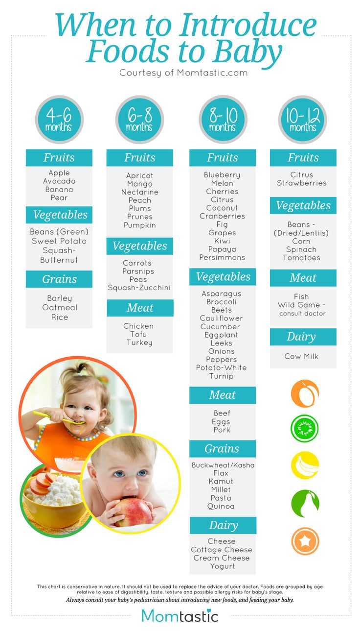 when to introduce foods to baby. Click for a printer-friendly version! Perfect for Moms-to-be!