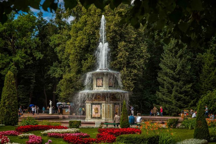 A lovely fountain, surrounded by trees in the grounds of Peterhof Summer Palace, St. Petersburg, Russia