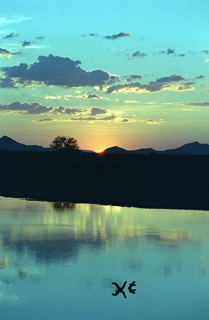 Madikwe Wildlife Reserve (Foto: Maoli)