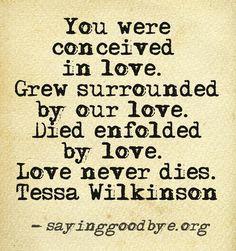 Stillborn Quotes Enchanting Best 25 Stillborn Quotes Ideas On Pinterest  Angel Baby Quotes