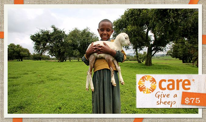 Sheep provide a family with wool to use or sell, milk to feed hungry children and fertilizer to grow better crops. Throw in another sheep and a farmer has a small breeding farm to generate even more money. Give the gift of a sheep and feel warm and fuzzy!