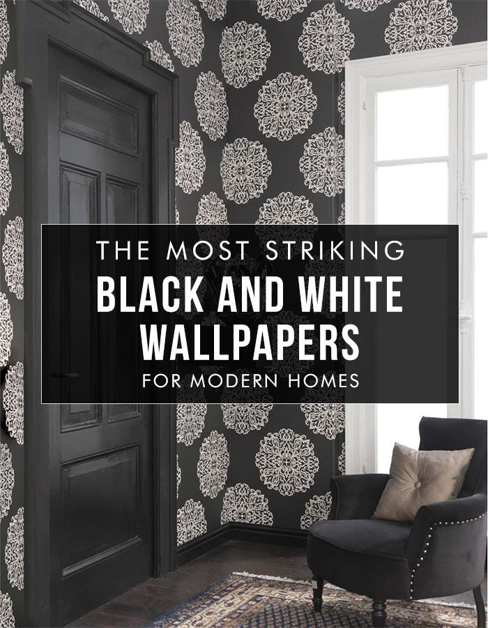 1000 images about black white wallpaper walls for Bold wallpaper