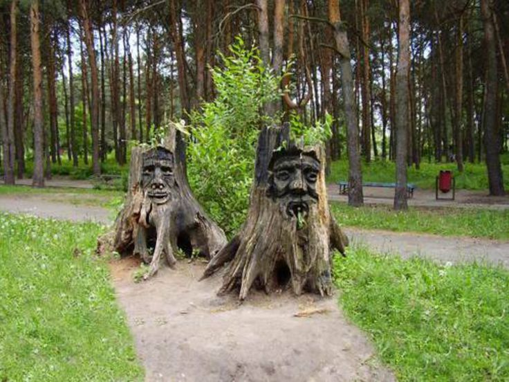 247 best images about tree stump ideas on pinterest for Tall tree stump ideas