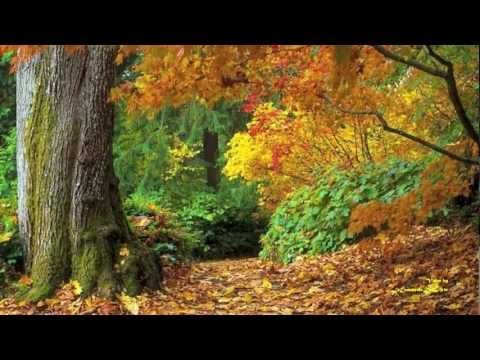 """Les Feuilles Mortes"" -  ( Yves Montand ) - ( Gigliola Cinquetti )"
