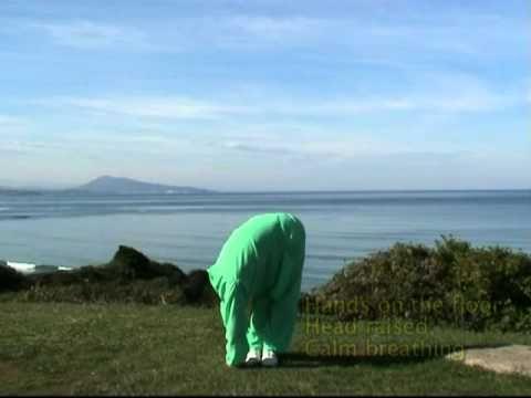 Yin ti ling rou shi san shi Treize mouvements pour étirer et assouplir le corps