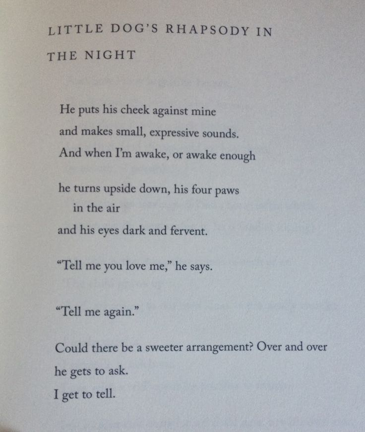 mary oliver instructions for living a life