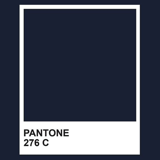 Pin By Elena Stoianova On General Ambiance Pantone Navy Pantone Blue Pantone Colour Palettes