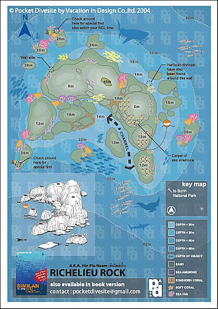 Thailand :: Khao Lak  : Richelieu Rock