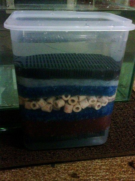 591 best images about aquarium on pinterest for Fish tank filter homemade