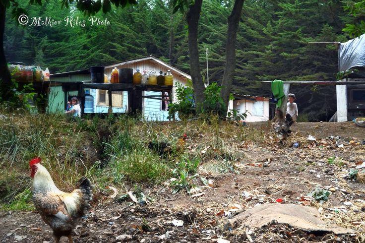 Malkior Riles Photographs: Vida Rural