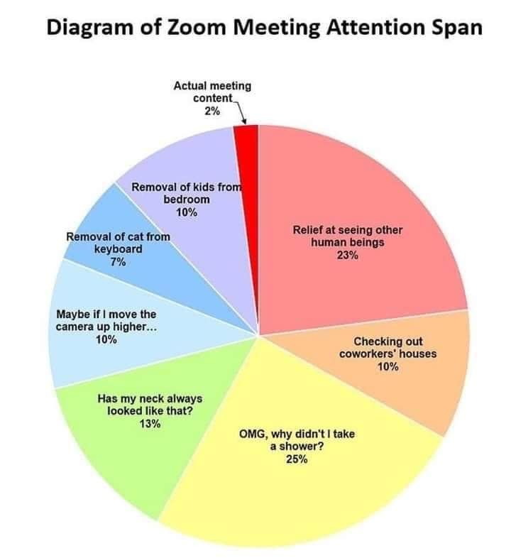 Pin By Siobhan Pauley On Funnies Meeting Memes Attention Span Remote Work