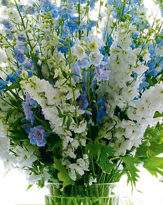 21 best images about springtime on pinterest for Flower arrangements with delphinium