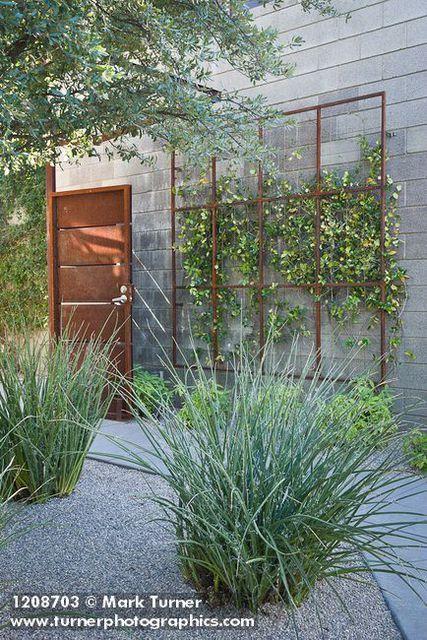 10 Best Wire Trellis Images On Pinterest Gardening