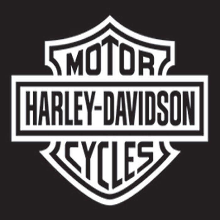 Best 25 harley davidson decals ideas on pinterest for Harley davidson motor company group inc