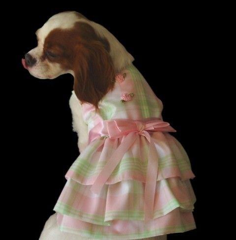 Pink and Green Spring  Dog  Dress Dog Clothes by miascloset, $25.00