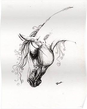 Arabian horse drawing by tarantella