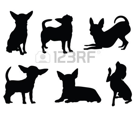 chihuahua hond illustratie set Stockfoto - 43118591