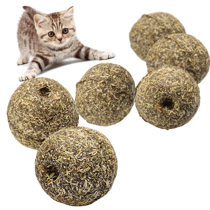 High Quality Cat Toy Natural Catnip Ball Pet Cats Rolling Ball Menthol Flavor Cat Treats Ball Toys For Cats Kitten Best Price