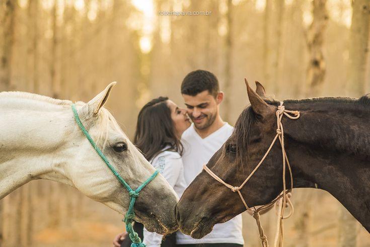Ensaio externo casal cavalos sol luz