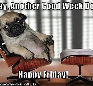 Happy Friday!  Already though?  Time flew this week.