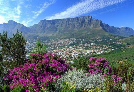 Table Mountain and City Tour - Table Mountain and Cape Town City Bowl as seen from Signal Hill