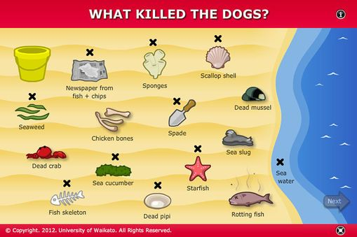 Interact with some of the processes that Cawthron scientists used to discover what killed the dogs on Auckland beaches in 2009. Collect samp...