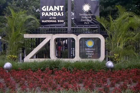 National Zoo, 3001 Connecticut Ave., NW, Washington, DC. One of the most kid-friendly places to visit in Washington, DC is the National Zoo where you can see more than 400 different species of animals. No admission fee.