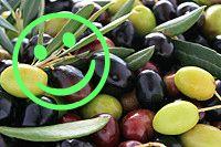 Het Verschil Tussen Goede en Slechte Koolhydraten