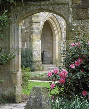 Pink Camellias flowering by a stone doorway at Nym...