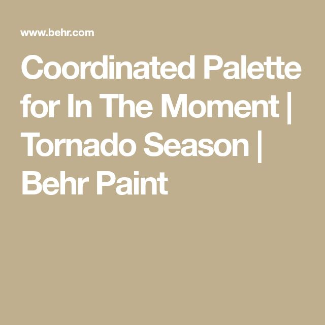 Coordinated Palette for In The Moment   Tornado Season   Behr Paint