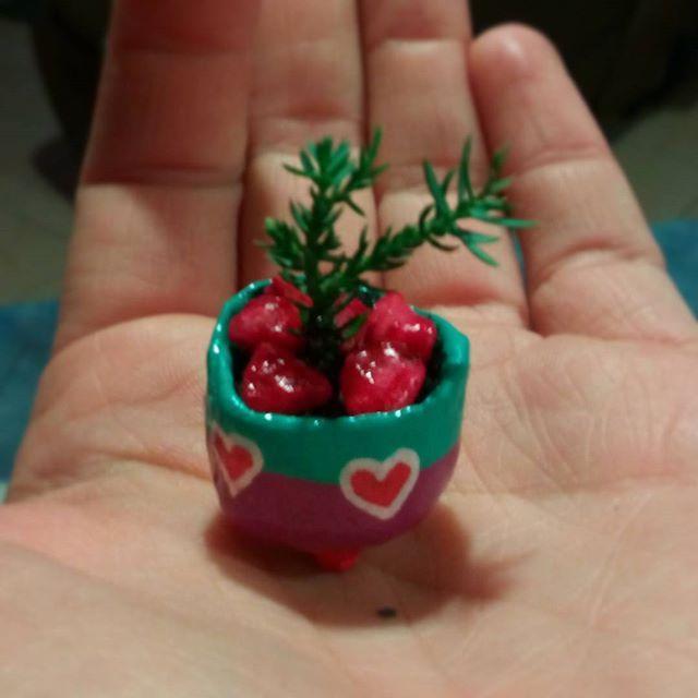 Miniature bonsai pots.