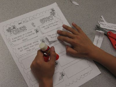 A fun way to incorporate cause and effect into your plants unit!: Schools Ideas, Fun Ideas, Incorpor Reading, Plants Life Cycling, Integration Science, Plants United, Reading Instructions, 2Nd Grade, 1St Grade