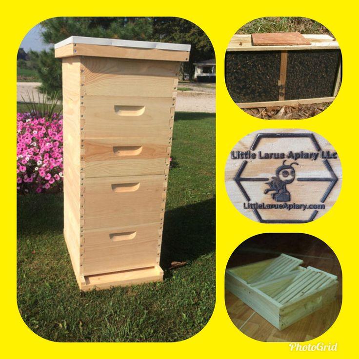2 deep 2 medium #Beekeeping Bee Hive w/Top Feeder & 3 lb Package Bees learn more @ http://etsy.me/2DIRChO #CompleteBeeHives #HoneyBees #langstroth #broodboxes #starterhivekits #beekeeping #packagebees #OhioBeeSupply More #BeeHive4Sale  @ www.LittleLarueApiary.com