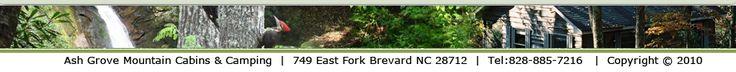 Cabins & Camping Near: Waterfalls, Mountain Biking, Outdoor Activities, Restaurants in Brevard NC