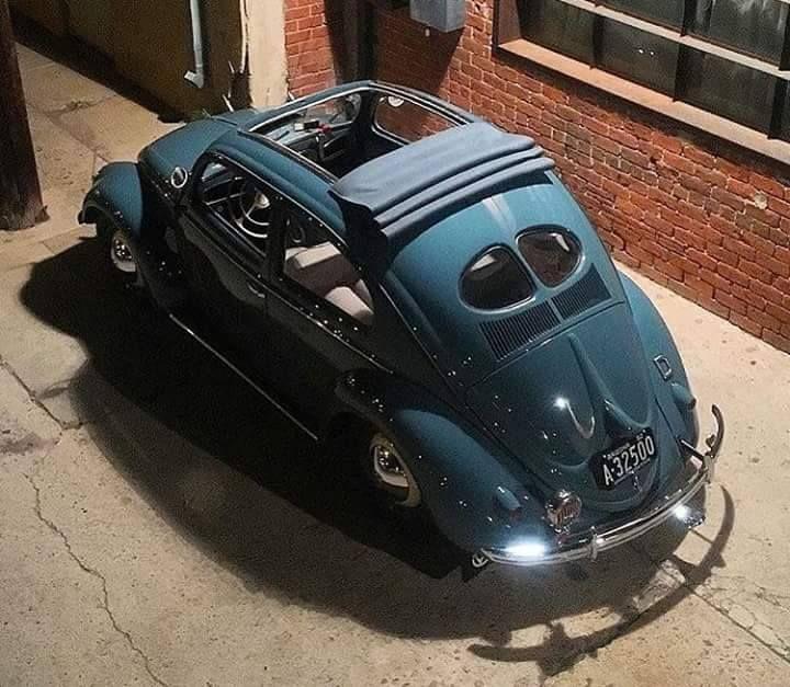Classic VW Split window Oval