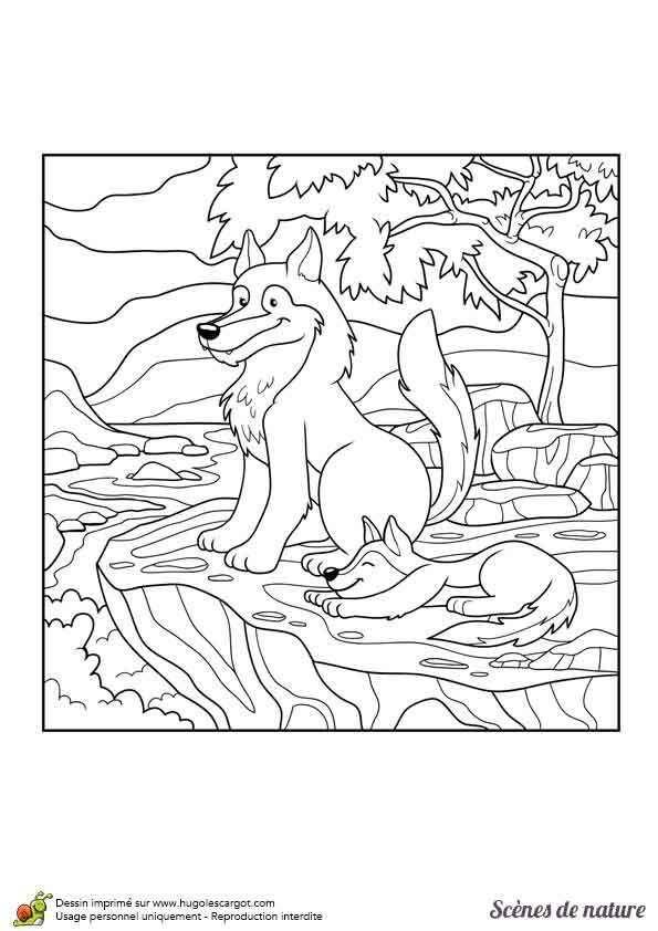 Раскраски с животными | МАМА И МАЛЫШ | Раскраски ...