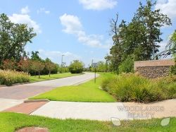 House driveway seen from a side perspective - Gallery - Woodlands Realty Pros