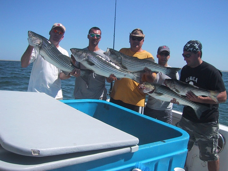 Emmajack fishing charters on cape cod cape cod fishing