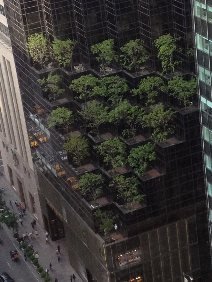Rooftop gardens on 5th Ave; NYC