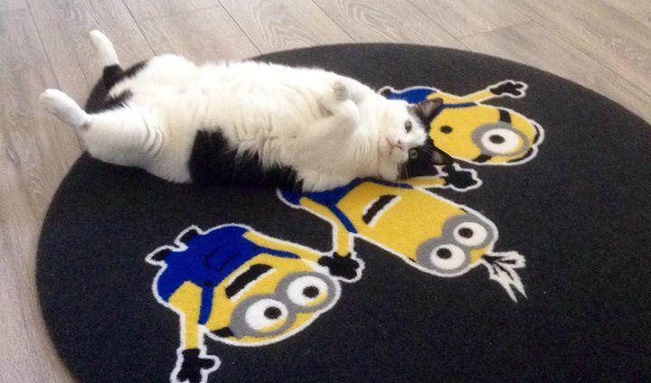 Anche i gatti amano i nostri zerbini  Stanchezza del venerdì pomeriggio....  www.gltzerbini.it #fattoconilcuore #gltzerbini #gltzerbinipersonalizzati #zerbinicocco #zerbinipersonalizzati #tiragraffi #gatto #tappetipersonalizzati #passatoia
